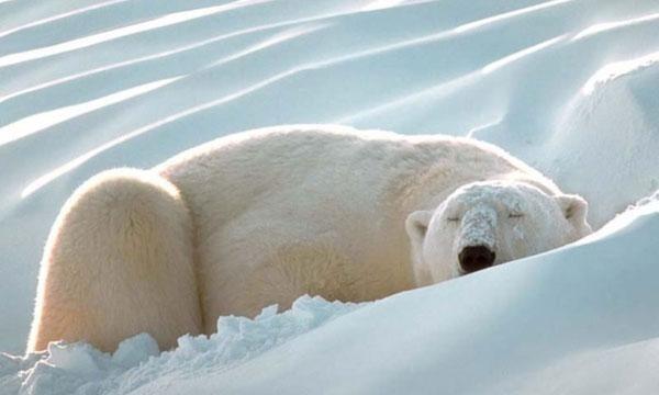 Lassan vége a klímák téli álmának is!