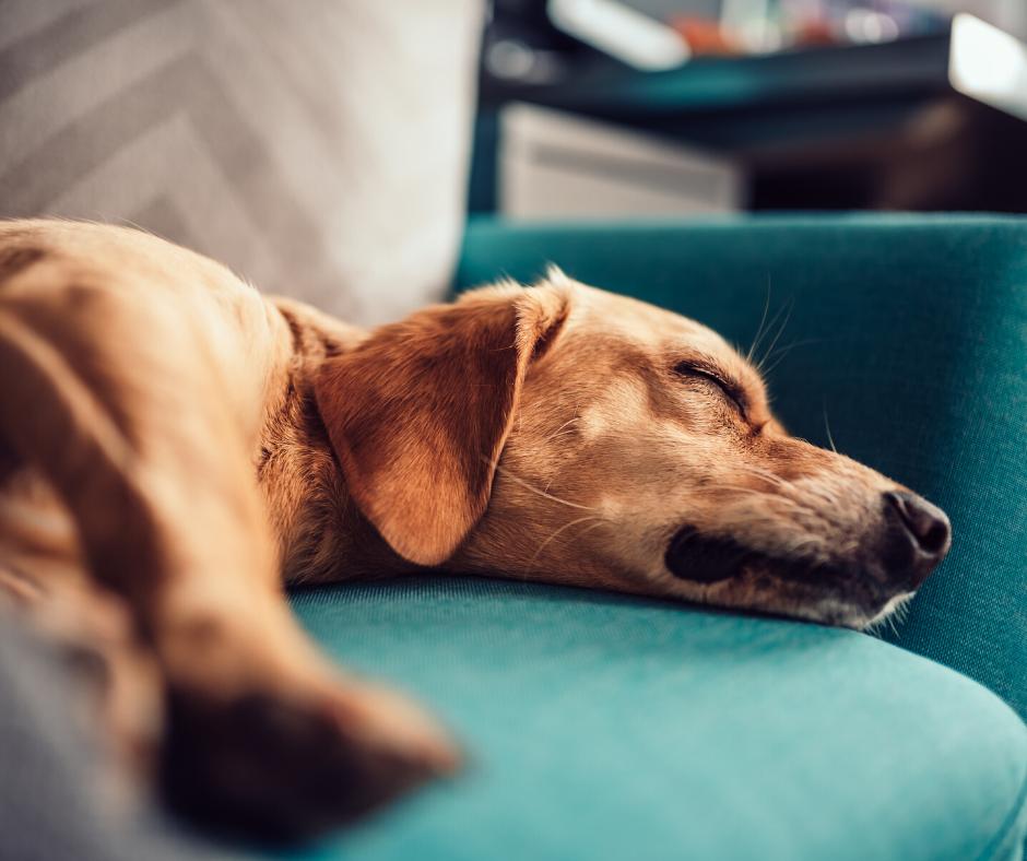 17 tipp, hogy jól aludj a kánikulában is!